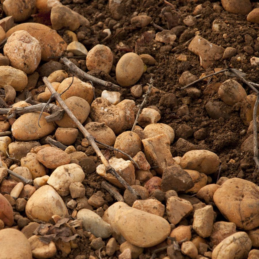 Sol de galets roulés Terre des Chardons